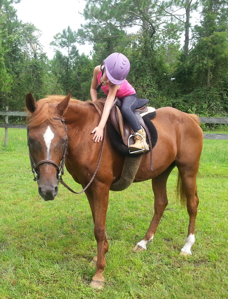 Riding And Petting Mystique Horse At Throwing Copper Farm Ormond Beach Fl 32174